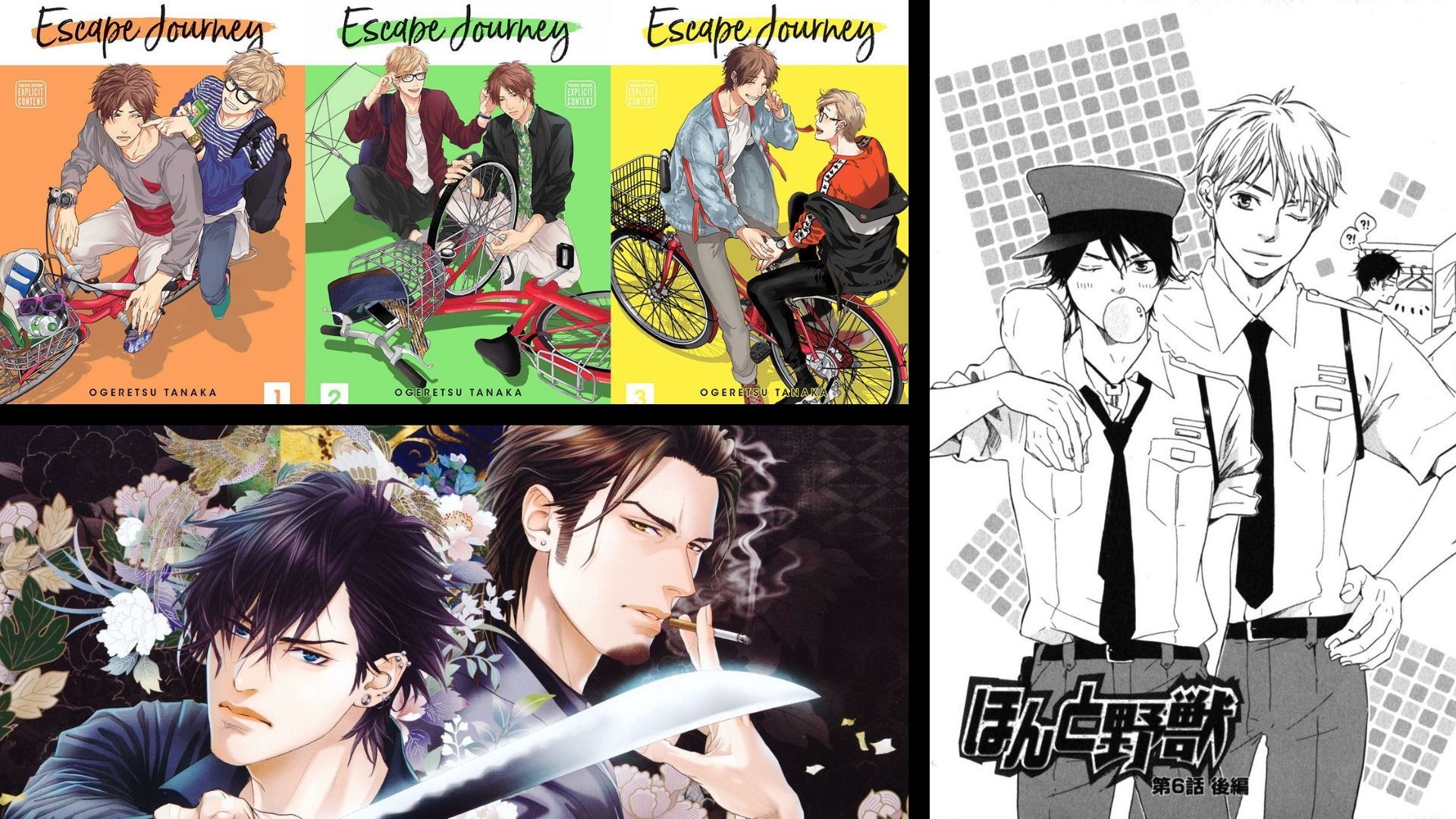 Photo of Which are the Best Yaoi Manga Available?