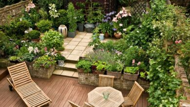 Photo of How to Build an Outdoor Oasis On a Budget – 2020 Guide