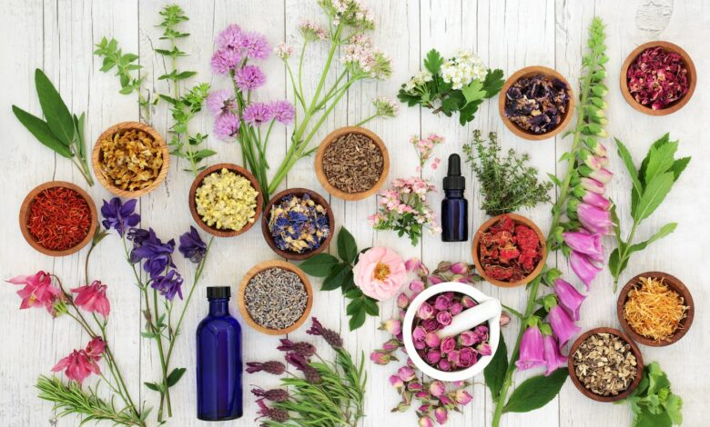 Photo of How to Use Essential Oils in Our Day to Day?
