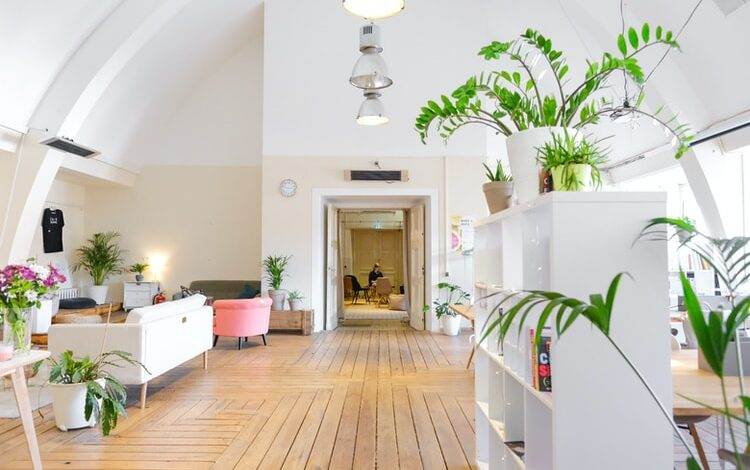 Photo of Wood Floor Underlay: Should You Consider This for Your Modern-Day Home?