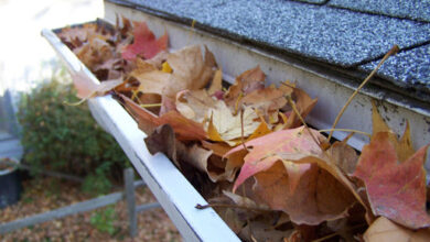 Photo of How Often Should You Check for Leaves in Your Gutters?